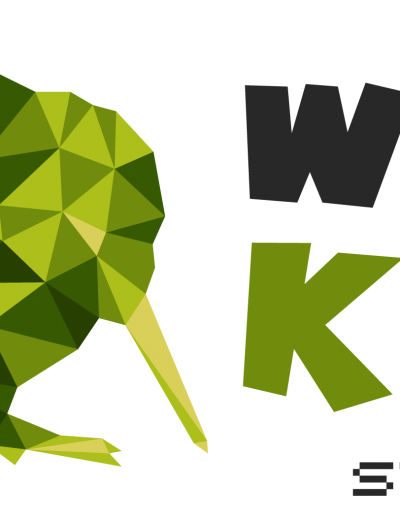WildKiwi - Low Poly style